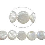 Coin Cultured Freshwater Pearl fuqi jewelry