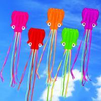 Sports Outdoor Fun Games Activities Kites